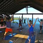 yoga uddannelse